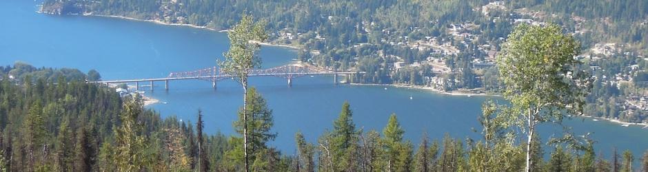 Nelson Highway Bridge